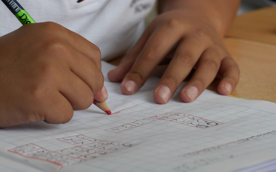 My child's school has suggested an assessment – what do they mean?